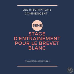 STAGE D'ENTRAINEMENT POUR LE BREVET BLANC